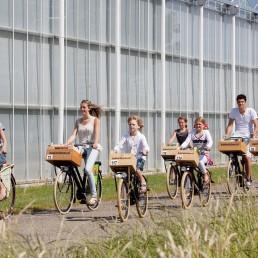 Famile van zeven personen fietst op een warme zomerse dag langs een wit gespoten kas in het Westland